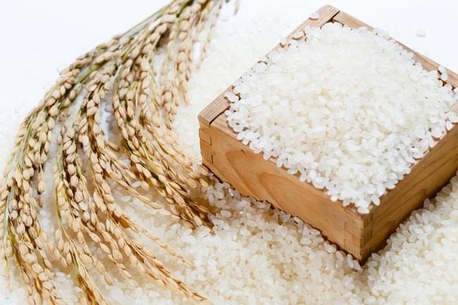Top 10 cửa hàng bán gạo sạch uy tín tại Tp.HCM: Alogao