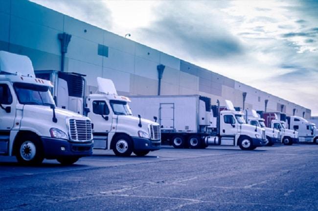 công ty dịch vụ xuất nhập khẩu tại tphcm Vinalink