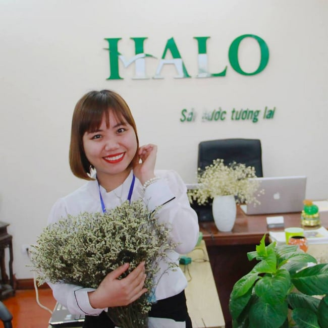 Công ty du học HALO