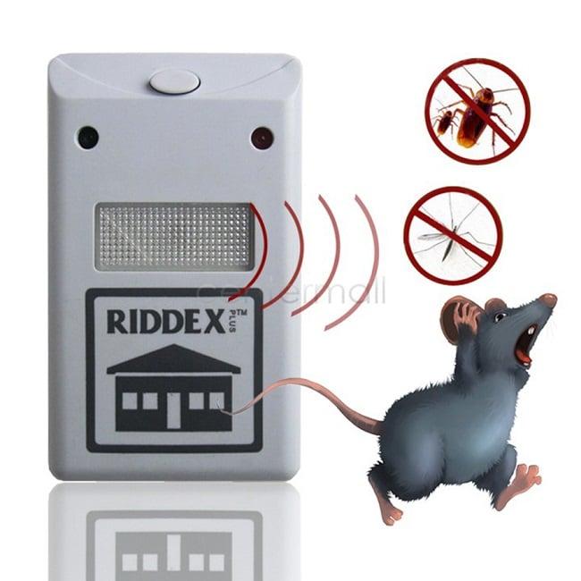 Mẹo diệt chuột an toàn và hiệu quả bằng âm thanh lớn