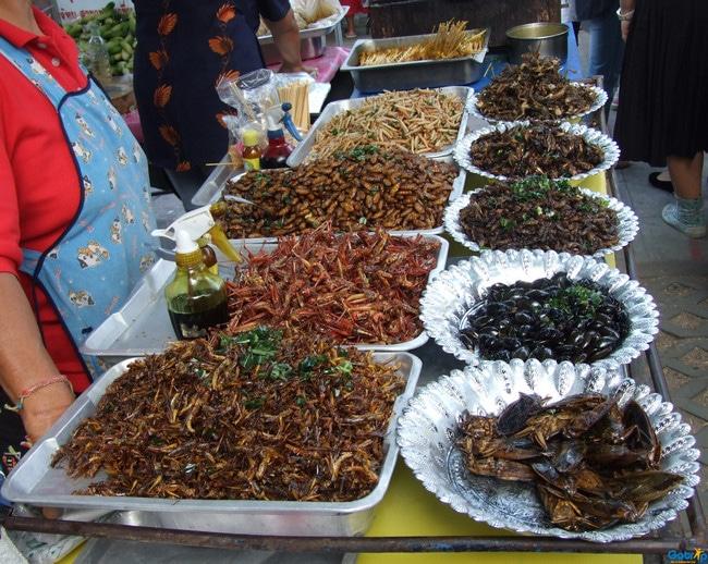 Các món ăn từ côn trùng