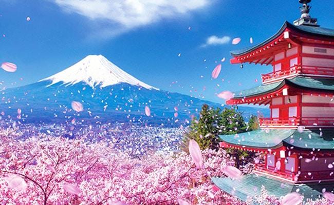 Tour du lịch Nhật Bản (Osaka - Kobe - Kyoto - Phú Sỹ - Tokyo)