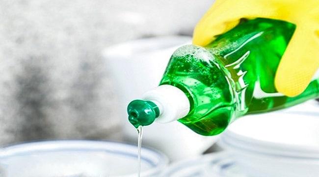Nước sôi và nước rửa chén cách diệt kiến tận gốc hiệu quả ko cần hóa chất