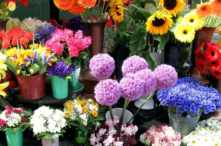 top 10 shop hoa tươi uy tín nhất ở Huế -  hana