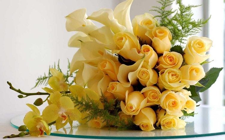 top 10 shop hoa tươi uy tín nhất ở Huế -  Roma