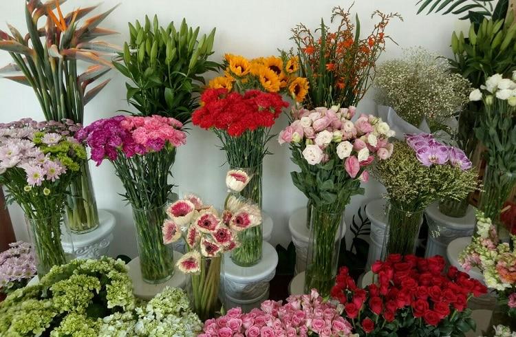 top 10 shop hoa tươi uy tín nhất ở Huế -  Thiên Thu