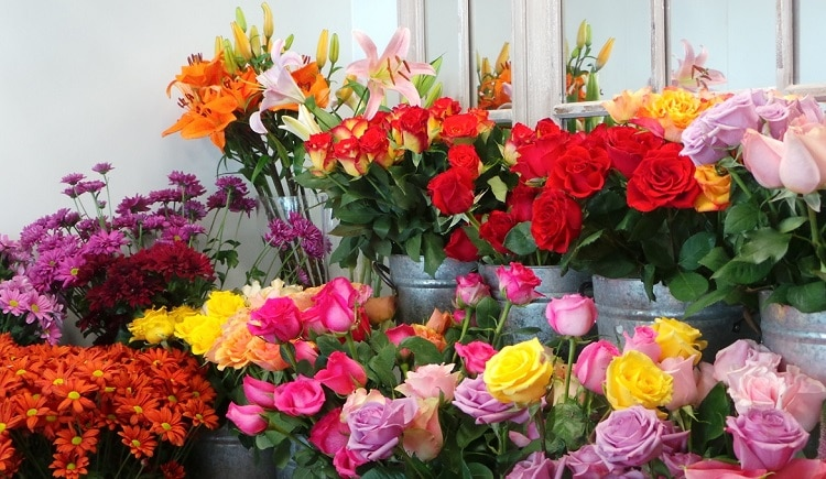 top 10 shop hoa tươi uy tín nhất ở Huế -  Huyền Vân