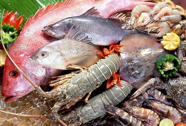 Khoái hải sản là Top 10 địa chỉ mua hải sản tươi sống ngon nhất TPHCM