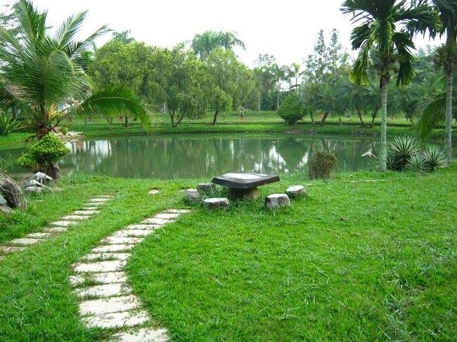 Làng an dường Ba Thương là Top 10 Viện dưỡng lão tốt nhất tại TP. Hồ Chí Minh