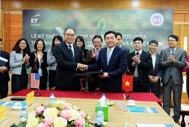 Công ty TNHH Ernst & Young Việt Nam là Top 10 Công ty kiểm toán hàng đầu ở TP. Hồ Chí Minh