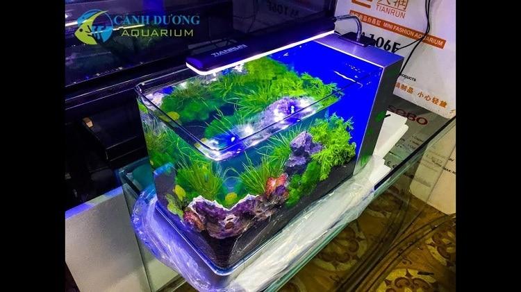 Địa chỉ bán bể cá cảnh giá rẻ uy tín chát lượng nhất tại tphcm