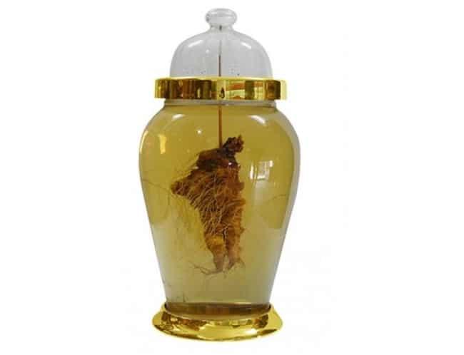 Thảo dược An Quốc Thái là Top 5 địa chỉ bán bình thủy tinh ngâm rượu uy tín và tốt ở TPHCM