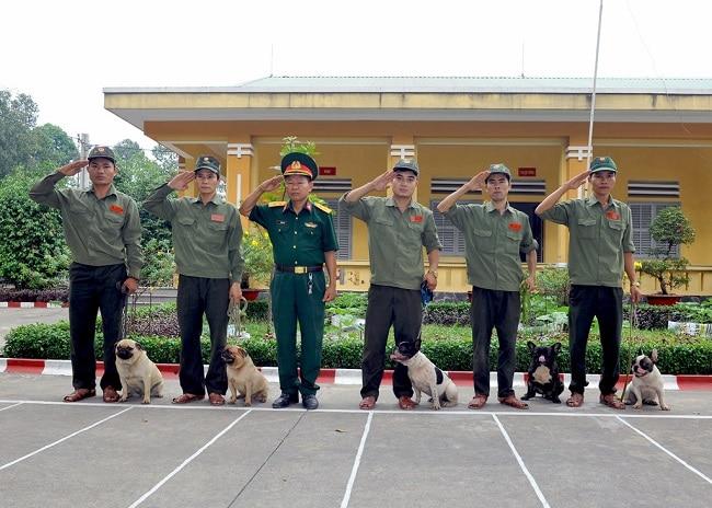 Trung tâm huấn luyện chó Quân Cảnh là Top 5 Trung tâm huấn luyện chó uy tín và chuyên nghiệp nhất ở TPHCM