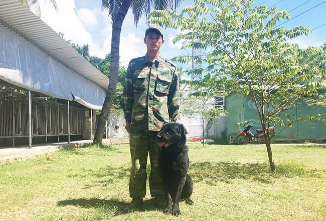 Trung tâm Cảnh Khuyển 24h là Top 5 Trung tâm huấn luyện chó uy tín và chuyên nghiệp nhất ở TPHCM