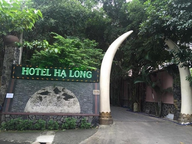 """Khách sạn Hạ Long là Top 10 Khách sạn giá """"rẻ mà tốt"""" nhất ở TP. Hồ Chí Minh"""