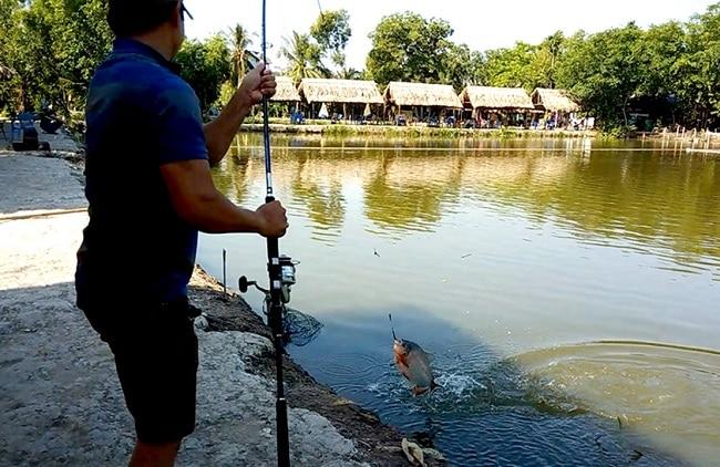 Khu câu cá Trí Râu là Top 10 Địa điểm câu cá lý tưởng nhất ở TPHCM