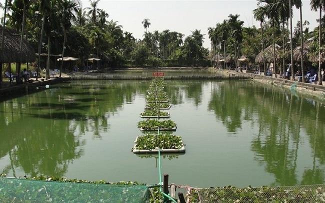 Hồ câu cá giải trí Vĩnh Lộc là Top 10 Địa điểm câu cá lý tưởng nhất ở TPHCM