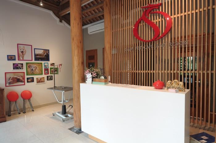 Top 10 phòng khám thú y uy tín nhất Hà Nội gaia