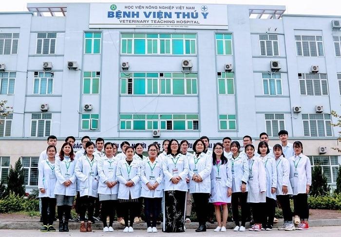 Top 10 phòng khám thú y uy tín nhất Hà Nội vietnam vethospital