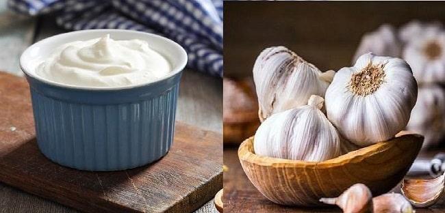 Trị mụn bằng tỏi và yogurt