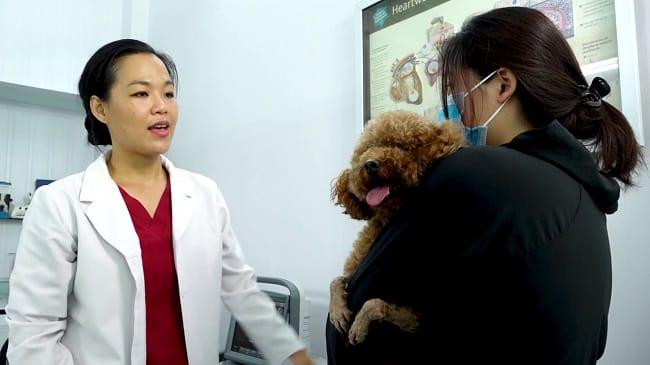 Phòng khám thú y TrustVet