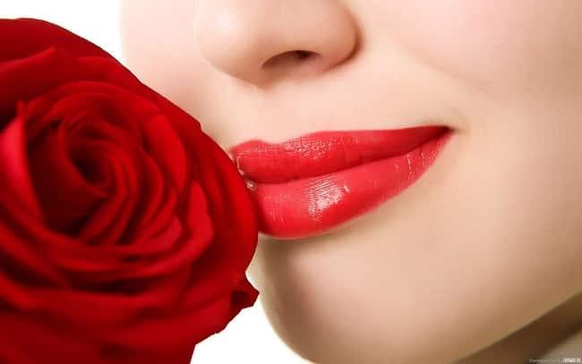 Cách chữa thâm môi bằng Hoa Hồng