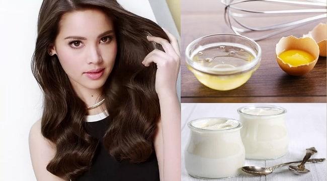 Cách ủ tóc bằng sữa chua và trứng tại nhà