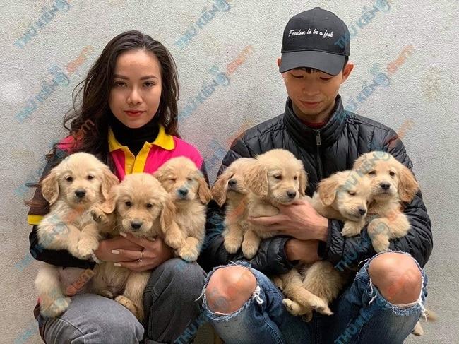 Thukieng.com - Web mua chó cảnh tại TPHCM