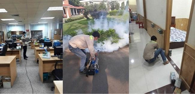 Công ty diệt mối Đại Việt Pest Control