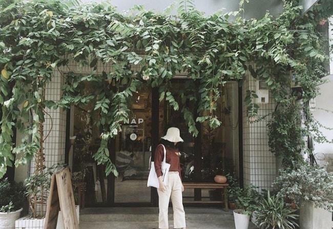 Nấp Saigon