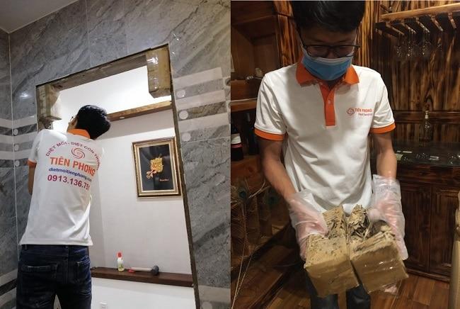 Công ty Tiên Phong Pest Control